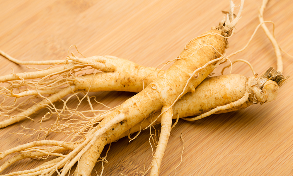 GS15-4® – World's Most Bioavailable Ginseng Produced by Biotechnology