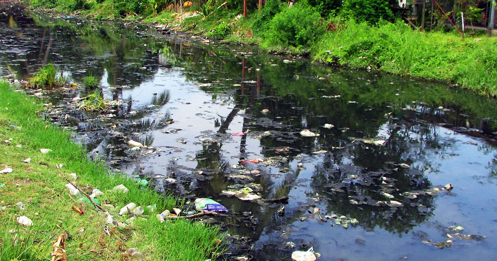 Rivers in Bayan Lepas are severely polluted